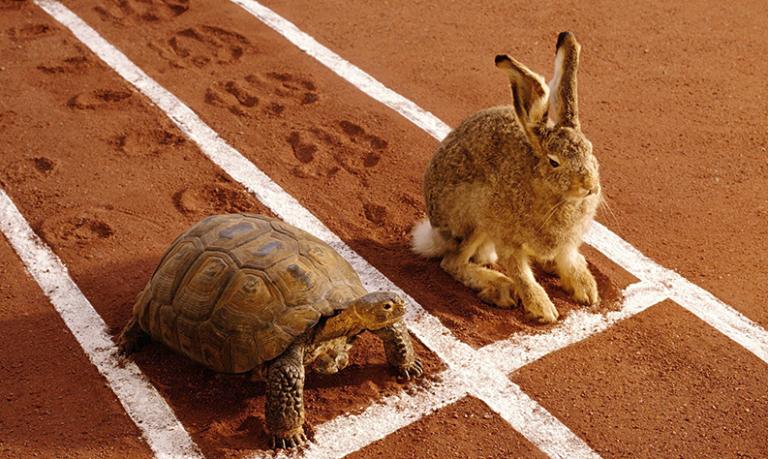 le lièvre et la tortue - negative split